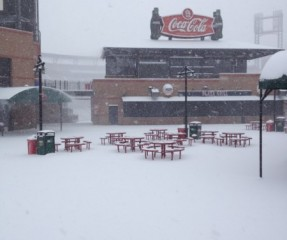 Patio at Busch